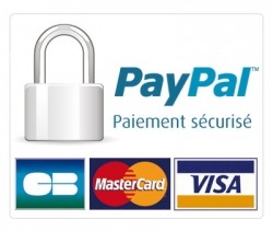 securite pay pal
