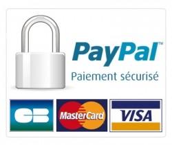 securite pay pal